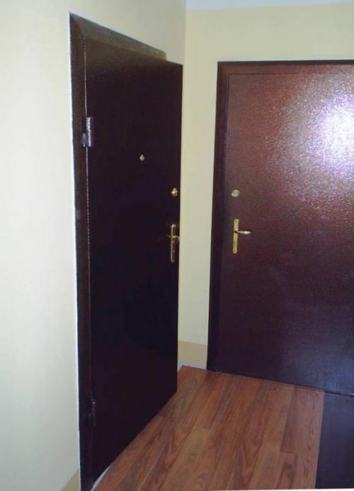 железная дверь на две квартиры